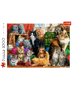 Trefl 10555 Feline Meeting 1000 piece